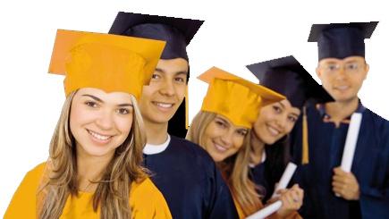 Licenciatura y Posgrado